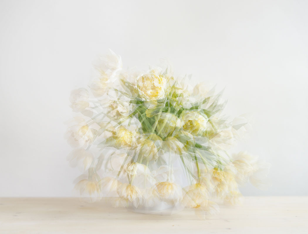 Sorin_Morar_flowers342_8